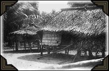 Native huts in New Guinea.